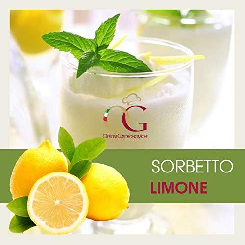 Sorbetto al Limone in buste da 1 kg (BOX 10 Buste da 1 kg | SCONTO 45%)