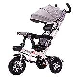 DBSCD Trikes for Toddlers, 4 in 1 Kids Tricycle Safety avec siège pivotant, Poussette Poussette et vélo de vélo avec Panier (Couleur: Gris)