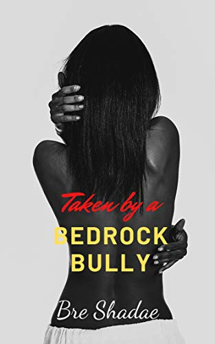 Taken By A Bedrock Bully: A Standalone Novella (English Edition)