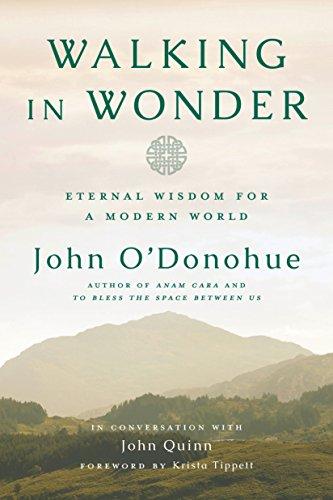 Walking in Wonder: Eternal Wisdom for a Modern World (English Edition)