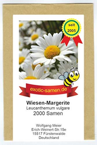 Magerwiesen-Margerite - Bienenweide - Schmetterlingsmagnet - Leucanthemum vulgare - 2000 Samen