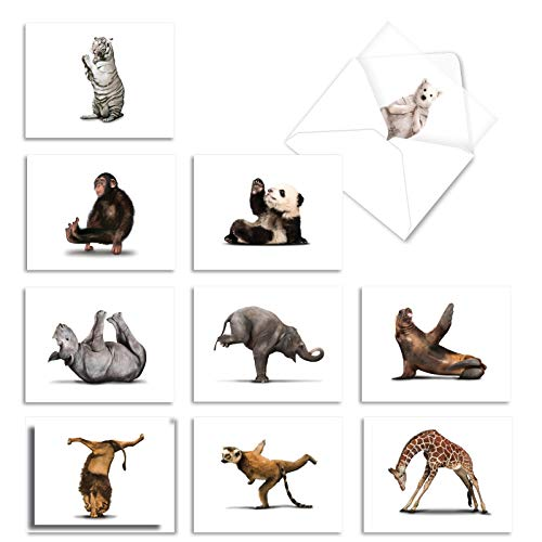 The Best Card Company - 10 Blank Yoga Note Cards Bulk (4 x 5.12 Inch) - Assorted Stick Figure and Animals Cards - Zoo Yoga M6547OCB
