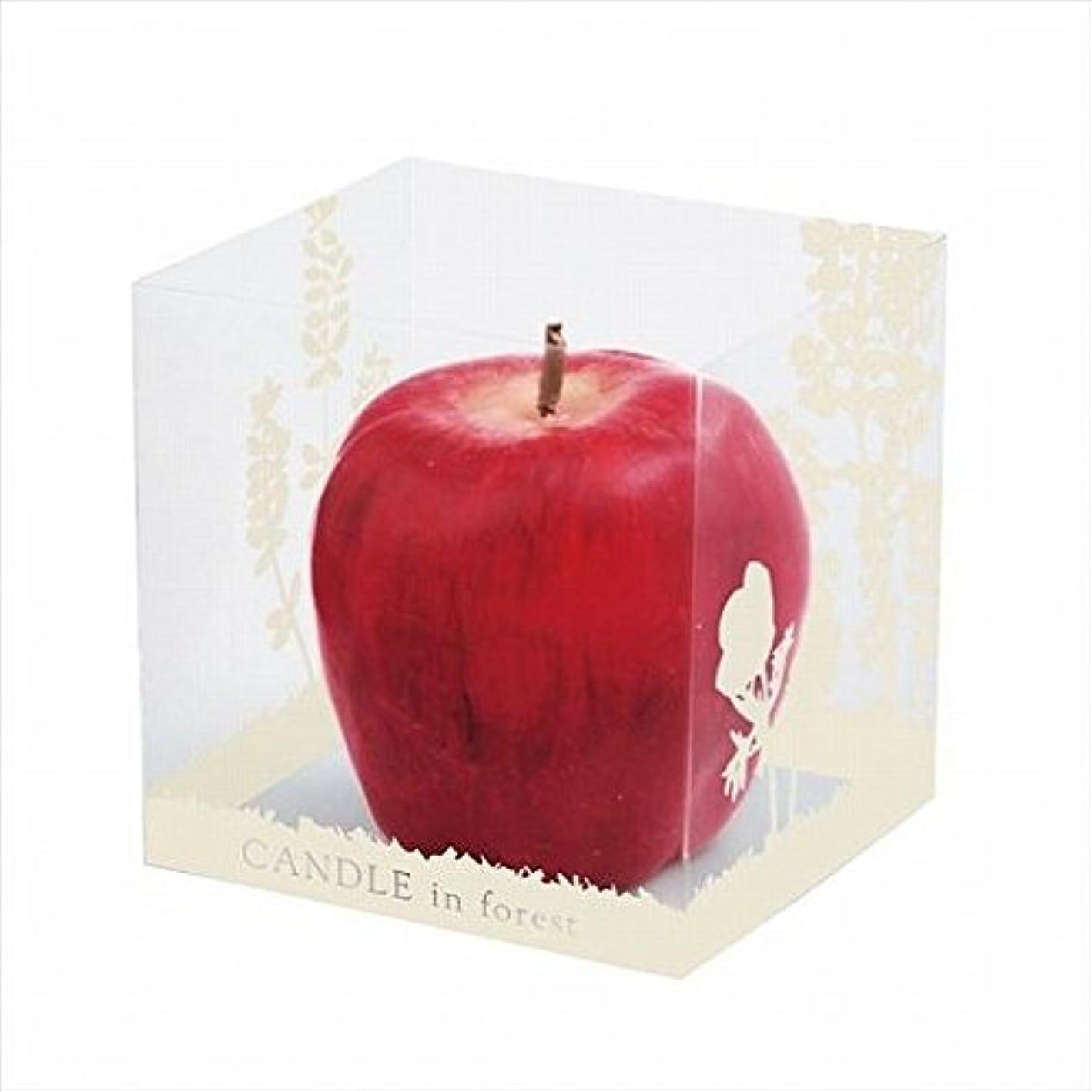 分岐する周術期非効率的なkameyama candle(カメヤマキャンドル) アップルキャンドル(A6600000)