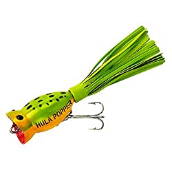 Analyzing 21 Lures In Search For The Best Bass Fishing Lure 2019