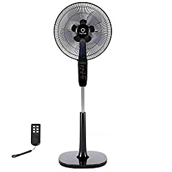 The Top 5 Best Oscillating Fans 1