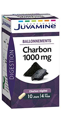 Juvamine Ballonnements Charbon 1000 mg 40 Gélules