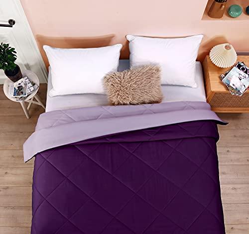 Seward Park Reversible Lightweight Summer Comforter, Hypoallergenic Microfiber Fill, Cooling Blanket, Full/Queen, 86x92, Plum/Purple