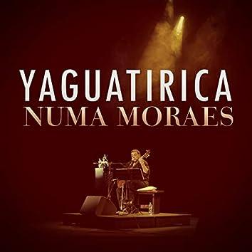 Yaguatirica (En Vivo)