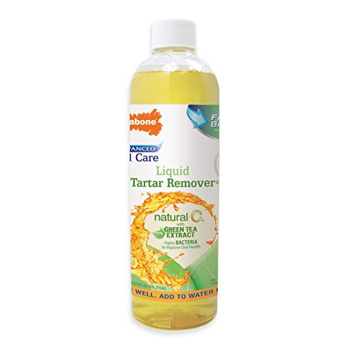 Nylabone Advanced Oral Care Natural Tartar Remover Green Tea 16 ounces