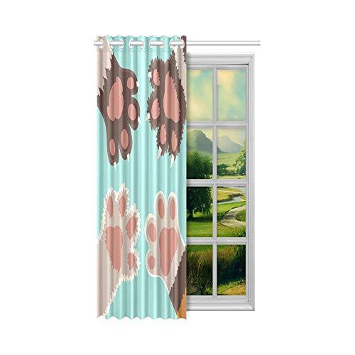 Generies Jungen Vorhänge für Schlafzimmer Schöne süße Waschbär Panel Bilder für Schlafzimmer 52x63 Zoll (132x160cm) 1 Panel Blackout Tülle Vorhang für Schlafzimmer Wohnzimmer