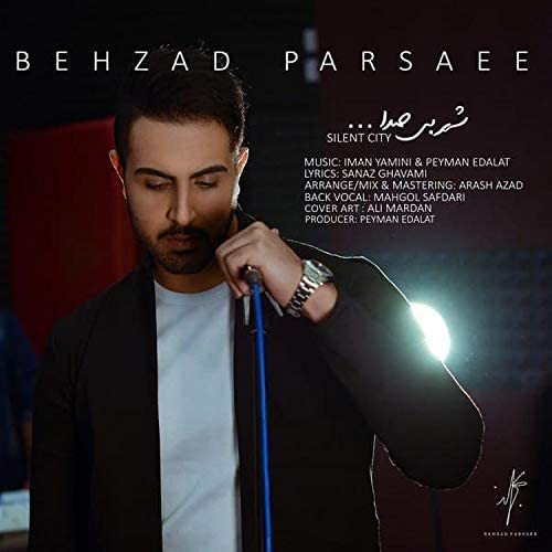 Behzad Parsaee