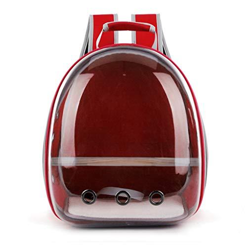 liaobeiotry Transporttasche für Papageien, Reisekapsel, transparent, atmungsaktiv, 360°