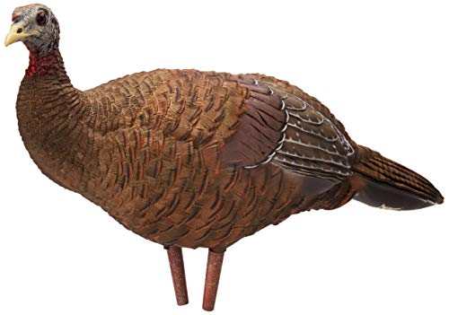 Avian-X Breeder Hen Turkey Decoy,  Lifelike Collapsible...