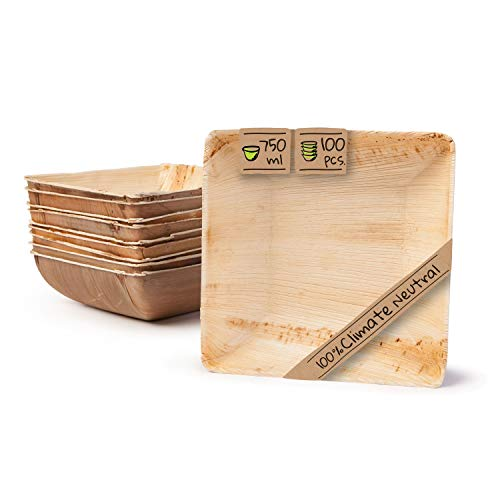 BIOZOYG Palmware Vajillas Desechables ecológicas Hechas de Hojas de Palma I 100 Piezas oja de Palma tazón Cuadrada 750ml 18cm I ensaladera - tazón de Sopa - tazón de Servir - tazón de Aperitivos