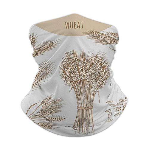 Wheat Ears,Face Scarf ana with 6 Filters Sun Protection Sheaf and Grains.Cereals Sketch Hand Drawn Drawing. Illustration Drawing - Activity