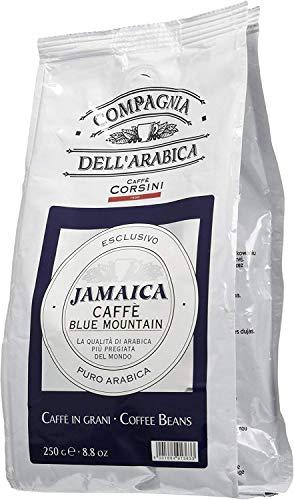 Caffè Corsini Compagnia dell'Arabica Jamaica Blue Mountain Caffè Monorigine in Grani, lo Specialty Coffee dalle Alture della Giamaica, Intenso e Fruttato, Confezione da 250 g in Grani