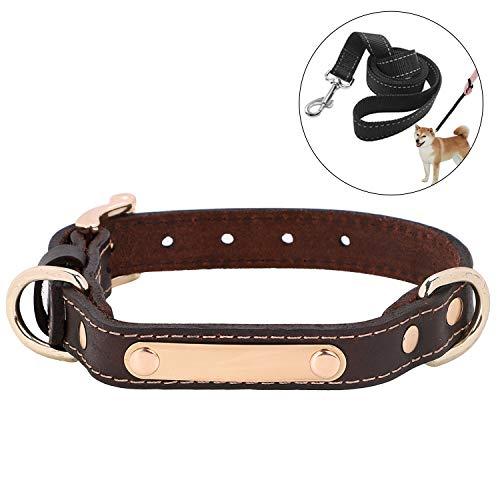LONTG Hundehalsband mit Namen Telefonnummer Hundemarke Adresse Individuell selbst Gestalten Kragen Hund verstellbar für große kleine Hunde Haustier Pet Halsbänder mit hundeleine als Geschenk