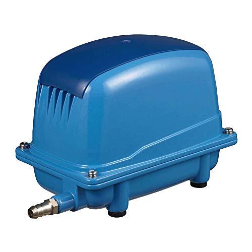 AquaForte Energiesparende Luftpumpe AP-60, 65L/min (bei 1 m), Max. Druck: 3,5 m, 38 W