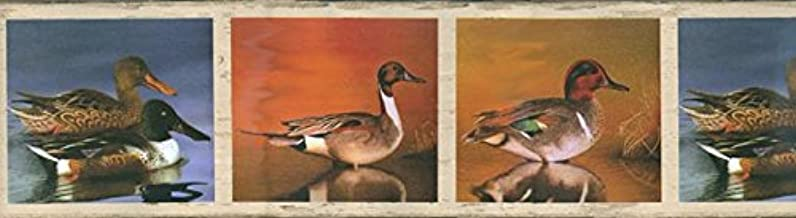 Colors Blue Green Brown Size 10.5 Inches by 15 Feet HG528B Concord Wallcoverings Prepasted Wallpaper Border Classic Nature Theme Ducks in The Wild