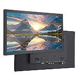 Goshyda Monitor HD 1080P de 17,3 '', Monitor Industrial de Montaje en Pared de Metal Completo con Entrada HDMI/VGA/AV/BNC/USB(Enchufe de la UE)