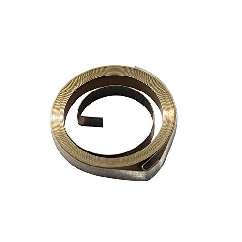 ZZB-LSTH, 1pc Flachfederstahl Triebfeder/Spiralspiralfedern, 0.5x5x2500mm