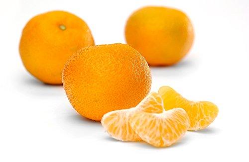Obst & Gemüse Bio Clementinen (1 x 1000 gr)