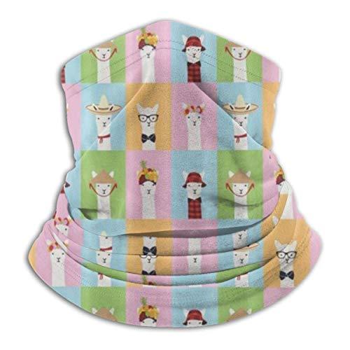 Dama Home Fleece Neck Warmer - Colorful Llama Invasion Tubo de polaina de cuello, pañuelo, máscara, diadema y gorro