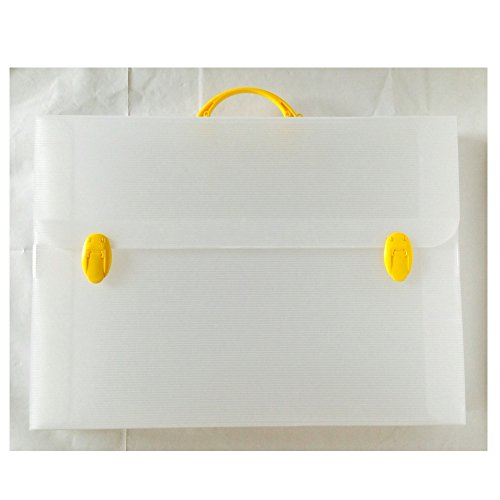 BALMAR 2000 valigetta polionda 52x72 dorso 3 (284-e)