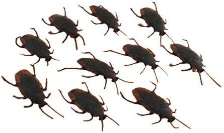 Tootpado Plastic Halloween Trick Toys Roaches Prank Novelty Cockroach Bugs Looks Real (Brown, 1a247) - Pack of 10