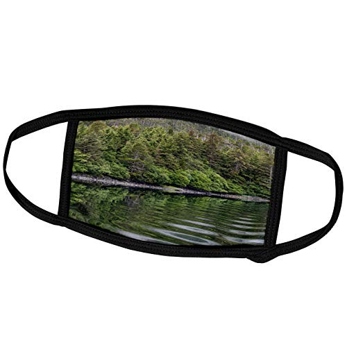 3dRose USA, Alaska, Tongass National Forest. Boat Wake in Mirror Harbor. - Face Masks (fm_345818_2)