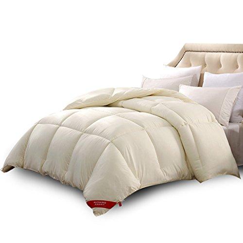 MMM Hiver couette chaude épais Quilt de fibre de polyester chaud double literie (taille : 220 * 240cm(4.5kg))