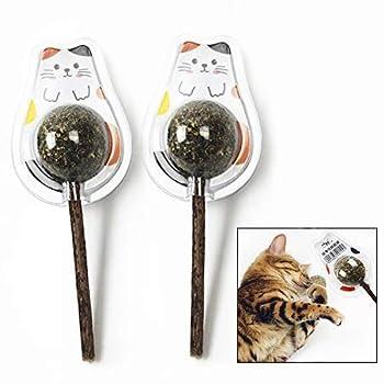 LHKJ 2pcs Jouets pour Herbe à Chat en Forme de Balle de Menthe Bio, Chat Menthe pour Chat Dents de Nettoyage Aide à la Mauvaise Haleine