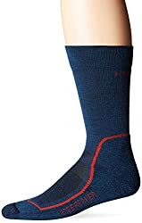 Icebreaker Men's Hike+ Lite Crew Sock