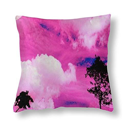 Lindo colorido Cloud Gastrodia Funda de almohada doble cara impresión 1 paquete de 55 cm x 55 cm