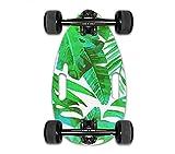 Mini Longboard Cruiser Skateboards -Petite Planche pour Adultes et Enfants avec Un Large Plateau de Skateboard de 17,5 Pouces en érable et de Grandes Roues de Longboard pour débutants (Green)