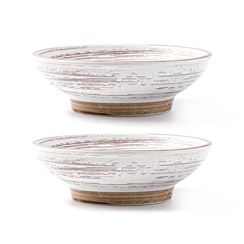 Creative Ramen Bowl grande de cerámica instantánea de fideos para el hogar, ensalada de frutas, vajilla japonesa, cuenco de fideos (color: 2 piezas)