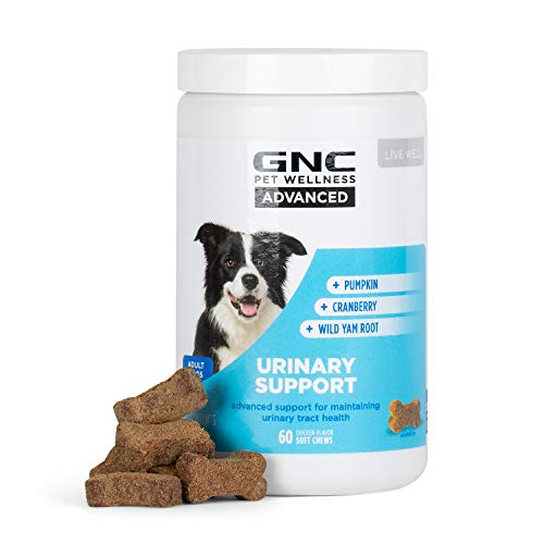 GNC for Pets Advanced Urinary Support for Dogs   Soft Chew Dog Supplement for All Dogs Urinary Tract Support   60ct Soft Chews Chicken Flavor Dog Supplement for Urinary Health