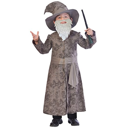 World Book Day Wise Wizard Costume (Harry Potter / Dumbledore) Age 7-8 Years