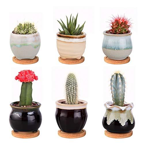 Vaso per piante grasse in ceramica per piante da interni ed esterni con foro di drenaggio bambù Vassoio per decorazione casa e ufficio Danolt Set di 6 Vaso di Fiori Pianta