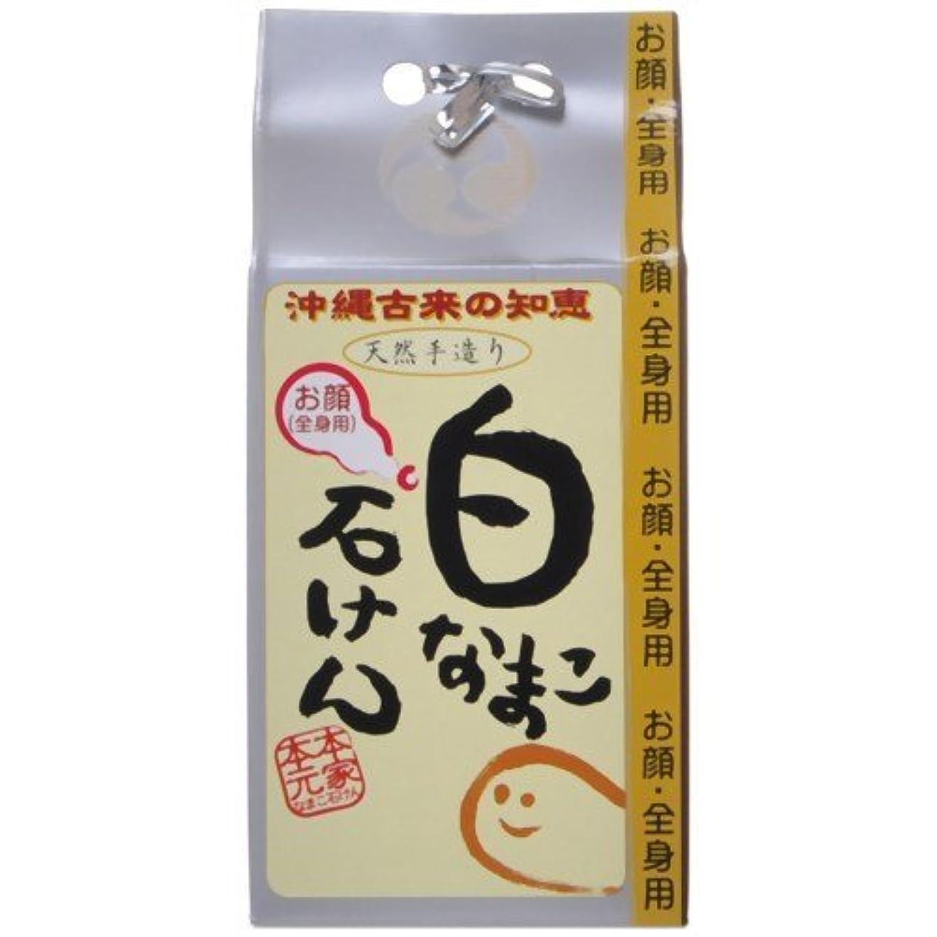 アグネスグレイ歯ワーカー白なまこ石けん なまこ石鹸 (単体) 90g  (お顔?全身用)