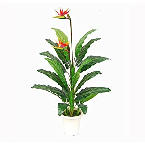 AMERIQUE Unique and Gorgeous Paradise Bird Flower Artificial Plant Real Touch Technology, Large 5′