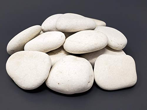 Capcouriers Abstract Rocks for Painting - Abstract Shape Painting Rocks