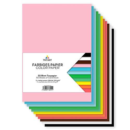 Tritart Carta colorata A4 210g/m2|55 Fogli colorati resistenti per fai da te|Cartoncini robusti creativi per fai da te|Cartoncini da foto 11 colori|Carta colorata DIY|Cartoncini fai da te