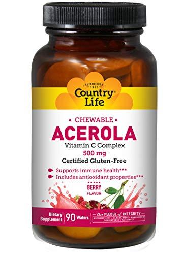 Chewable Acerola - Vitamin C Complex (500mg) 90 wafrs