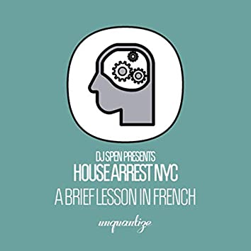 A Brief Lesson In French