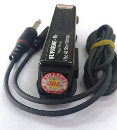 Carnatische Saraswati Veena Elektromagnetische Induktion elektrische Oberfläche Pickup