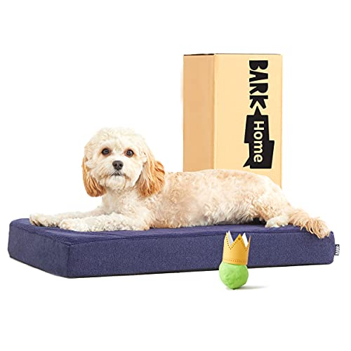 Barkbox Memory Foam Platform Dog Bed   Plush Mattress for Orthopedic Joint Relief   Machine Washable Cuddler with Removable Cover and Water-Resistant Lining   Includes Squeaker Toy (Small, Navy)