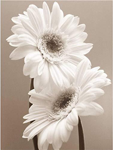 LIWEIXKY Rompecabezas Beautiful View Puzzle 1000 Piezas Rompecabezas para Adultos Juguetes educativos Niños Cool Rompecabezas de Madera Regalo Decorativo-Flores Blancas