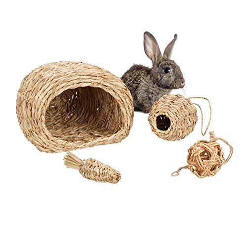 Relaxdays Juego de Accesorios para Animales pequeños (4 Piezas, casa de Hierba, 2 Bolas y Zanahoria), Accesorios para Jaula, cobayas y Conejos, Color Natural