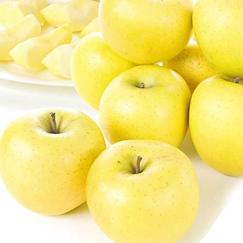 国華園 食品 長野産 シナノゴールド 5�s1箱 りんご